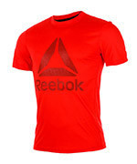 koszulka sportowa męska REEBOK WORKOUT READY SUPREMIUM 2.0 TEE / BK6313