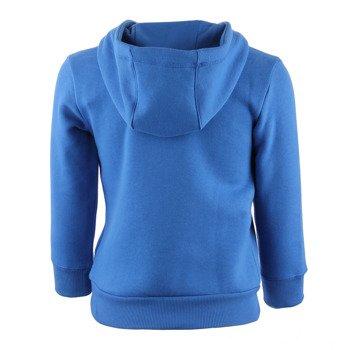 bluza sportowa chłopięca ADIDAS ESSENTIALS LOGO HOODIE / AY8246